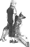 Servicehunde-Sachsen